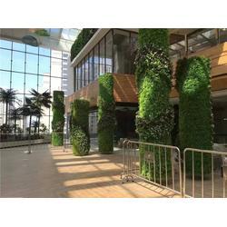 厦门植物墙公司-美尚园艺-上门安装-植物墙图片