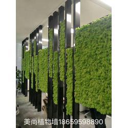 漳州室内仿真植物墙安装 美尚园艺 实惠 漳州仿真植物墙