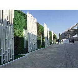 仿真植物墙多少钱-美尚园艺-专业安装-仿真植物墙图片