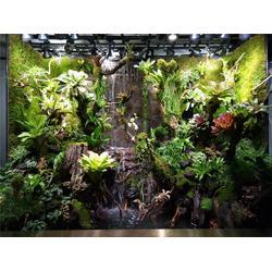 南安植物墻-美尚園藝-實惠(在線咨詢)-植物墻圖片
