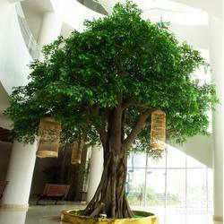 南平仿真植物墙-仿真植物墙-美尚园艺-专业安装图片