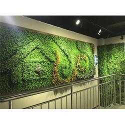 美尚园艺-实惠 立体植物墙-河南植物墙图片