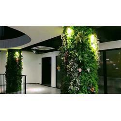 绿雕-美尚园艺-实惠-绿雕哪家好图片
