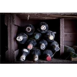 康佳怡食品贸易,安徽葡萄酒代理,葡萄酒代理图片