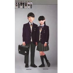 开远学校校服-丽雅服饰(在线咨询)开远学校校服图片
