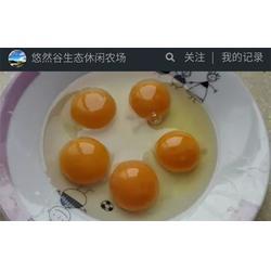 柴鸡蛋好吗-柴鸡蛋销路、银河谷(优质商家)图片