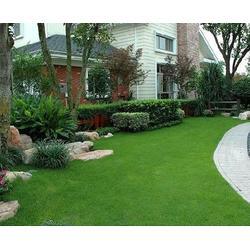 安徽天伦市政(图)-专业景观绿化-安徽景观绿化图片