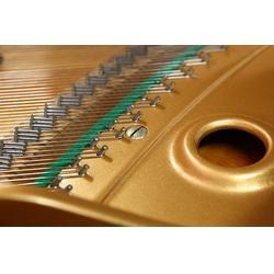 钢琴调音,深圳市三禾乐器公司,专业钢琴调音图片