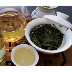 安吉白茶茶山租赁出售-福建合熹堂茶业图片