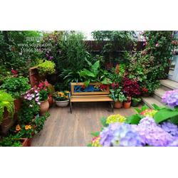 阳台花园设计图片