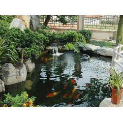 假山鱼池设计施工图片