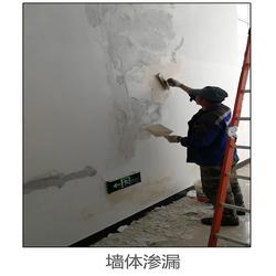 墙体渗漏维修费用、精典、宣城墙体渗漏图片