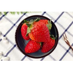 水果捞代理-菓料-巴彦淖尔水果捞图片