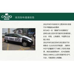 负氧离子汽车坐垫_绿晨轶阳-健康生活_负氧离子汽车坐垫品牌图片