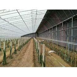 C型槽双膜骨架是建造葡萄温室,草莓温室,各种蔬菜暖棚的优质型材图片
