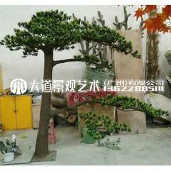 家居客廳花園觀賞人造羅漢松樹 展覽館布景裝飾大型仿真植物松樹圖片