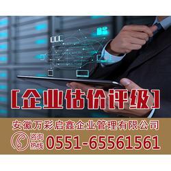 做企业估价评级报告公司,安徽万彩,四川企业估价评级图片