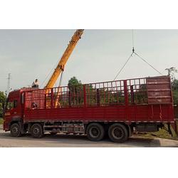 大件物流货运_邦运物流(在线咨询)_玉溪货运物流图片