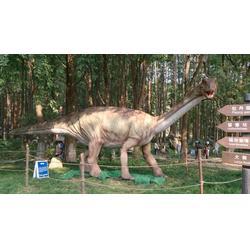 恐龙展览出售、巨旗展览(在线咨询)、恐龙展览图片