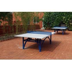 二合一乒乓球台厂家|征途体育公司|广元乒乓球台图片
