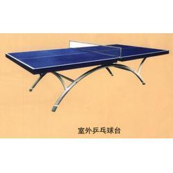 室内乒乓球台标准 征途体育公司 温州乒乓球台图片