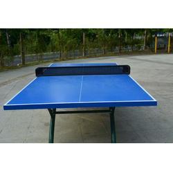 室内乒乓球台厂家_征途体育(在线咨询)_舟山乒乓球台图片