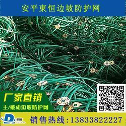 安平主动边坡防护网 SR250绞索防护网 山坡拦石网厂家 缆索护栏 缠绕型环形网 钢丝绳网图片