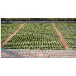 贵州植草格|富园彩砖厂|植草格多少钱一平图片