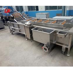 大葱清洗加工设备商-雷诺机械有限公司图片