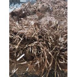 磷青铜回收、磷青铜回收站点、泰煌贸易(优质商家)图片