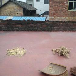 深圳防水补漏图片