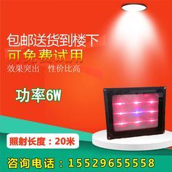火龍果補光燈多少錢、火龍果補光燈、火龍果補光燈原理圖片