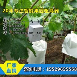 果园驱鸟器-果园电驱鸟器哪里买-果园驱鸟器哪家好(优质商家)图片