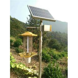 太阳能杀虫灯 果园,骏臻市政,江苏太阳能杀虫灯图片
