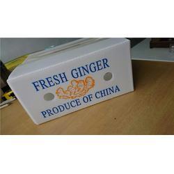 水果包装箱-和田包装箱-弘特包装科技有限公司(查看)图片