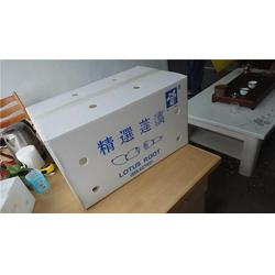 榴莲包装箱厂家、弘特包装、彭阳县包装箱图片