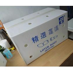 潍坊弘特包装 中空板包装箱报价-阜新包装箱图片