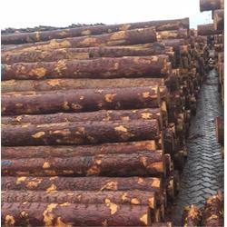 1.0*1.0实木颗粒厂家、实木颗粒、营海福匠图片