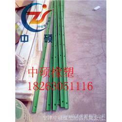 耐磨鏈條導軌、中碩橡塑(在線咨詢)、08B耐磨鏈條導軌圖片