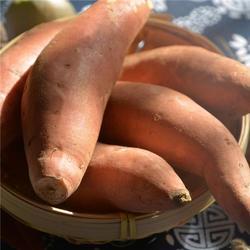 蜜薯-蜜薯-后赵庄红薯图片