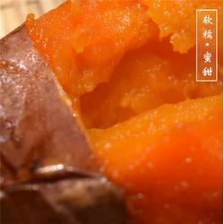 龙岩烤薯店蜜薯,后赵庄红薯,烤薯店蜜薯图片