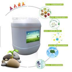 供应植物液除臭剂用于垃圾站除臭-植物型除臭剂-力信环保图片