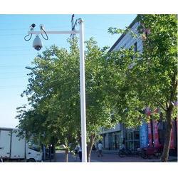 5米监控杆供应商-信诺灯饰优质服务-百色5米监控杆图片