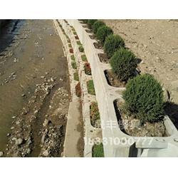 生态护坡模具为我国建设做出那些贡献图片