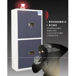 家用保密柜(图)|保密柜厂家|保密柜图片