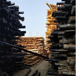 振华防腐材料_防腐油木杆_防腐油木杆型号图片