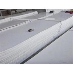 车厢滑板生产商,东兴橡塑,车厢滑板图片