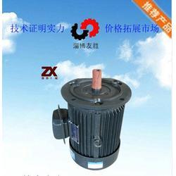 天津立式电机,友胜化工,立式电机安装图片