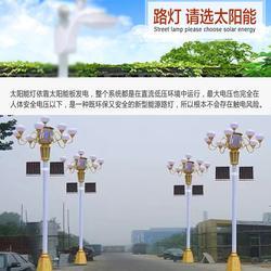 汉中太阳能路灯|朗和照明|乡村太阳能路灯图片