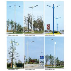 城市道路路燈、朗和照明(在線咨詢)、工業園區市政路燈施工圖片